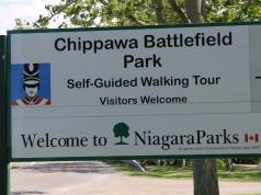 The Battle of Chippawa_mosaicedition.ca_ea