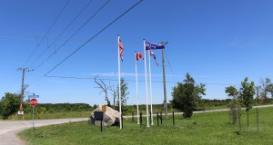 Victory At The Battle Of Beaverdams